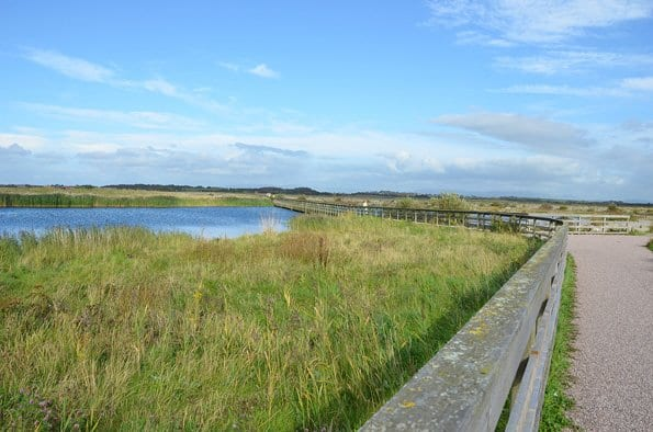 Fleetwood Marsh Nature Park, plenty of space for walking