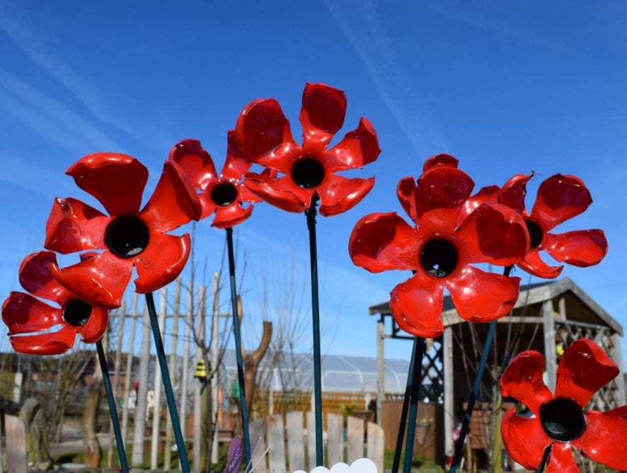 10,000 poppies for Fleetwood in Bloom